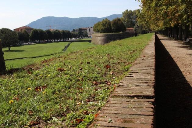 Walks of Lucca
