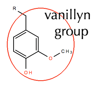 Molecular fragments, R-groups, and functional groups