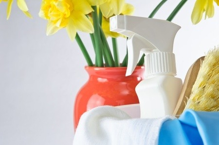spring_cleaning_daffodil_supplies_spray_bottle_scrub_brush_bucket_9154108_blog