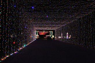 10best-holiday-events-prairie-lights-tunnel-facebook_54_990x660
