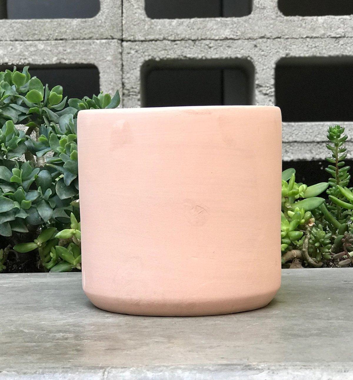 Light Pink Terra Cotta Pot