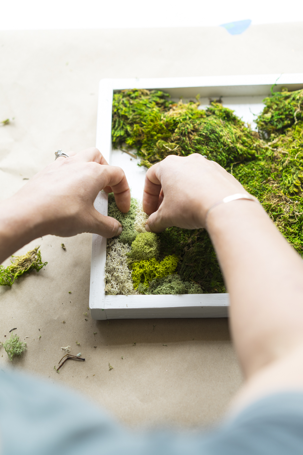 Moss Garden DIY - Dalla Vita