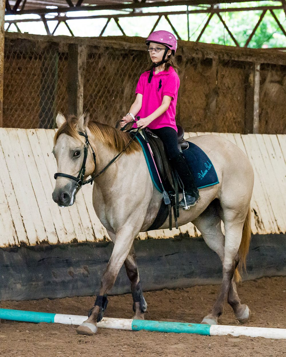 Semi-Private Horse Riding Lessons