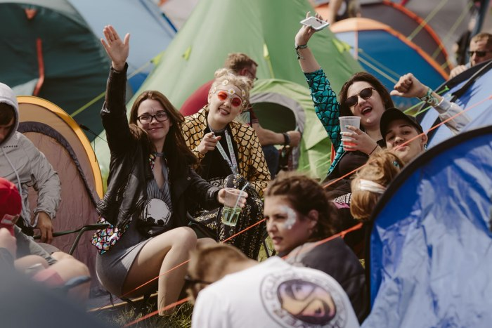 Isle of Wight Festival _ Sara Lincoln