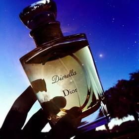 diorealla pic 2 dark