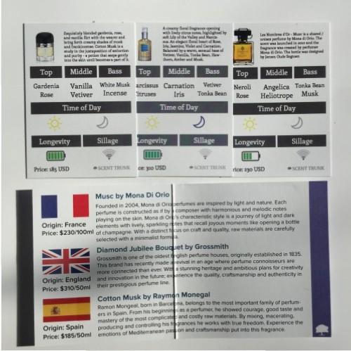 Scenttrunk dalybeauty review
