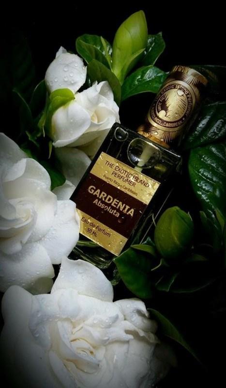 The Exotic Island Perfumer Gardenia Absolute