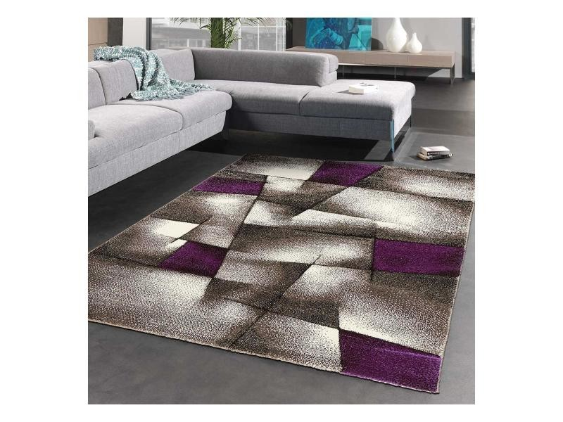 tapis salon violet gris enredada
