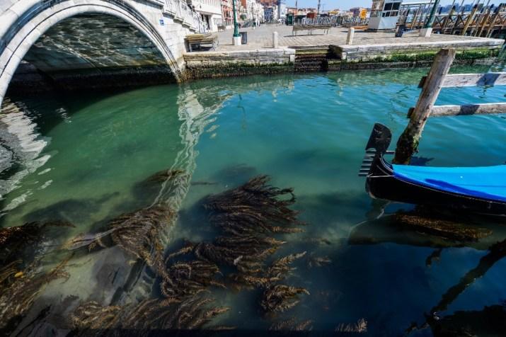 Venecia Agua