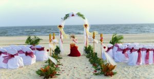 Seashell Symphony Beach Wedding Decor