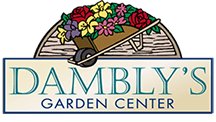 New Homepage Damblys Garden Center