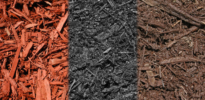 colored-mulch