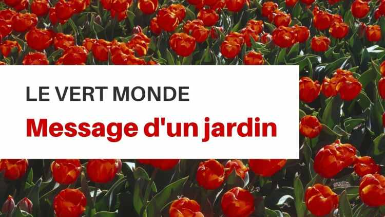 psylogis jardin message