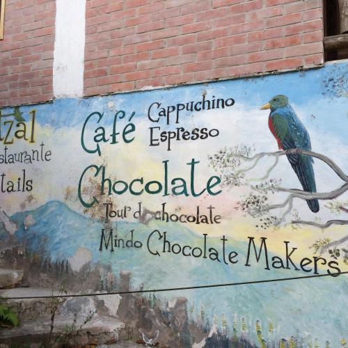 Meet Your Maker: José Meza of Mindo Chocolate