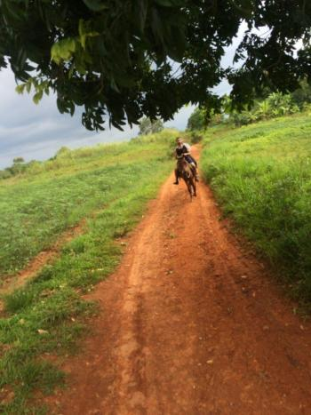 Discovering Cigars on Horseback in Viñales Cuba riding horseback
