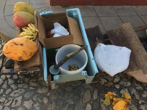 A makeshift fruit stand in Trinidad, Cuba, with mangoes and bananas