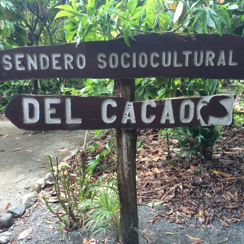 My Mecca: Cuban Cacao Culture to the East