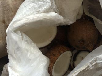 Baracoa Coconuts Bag