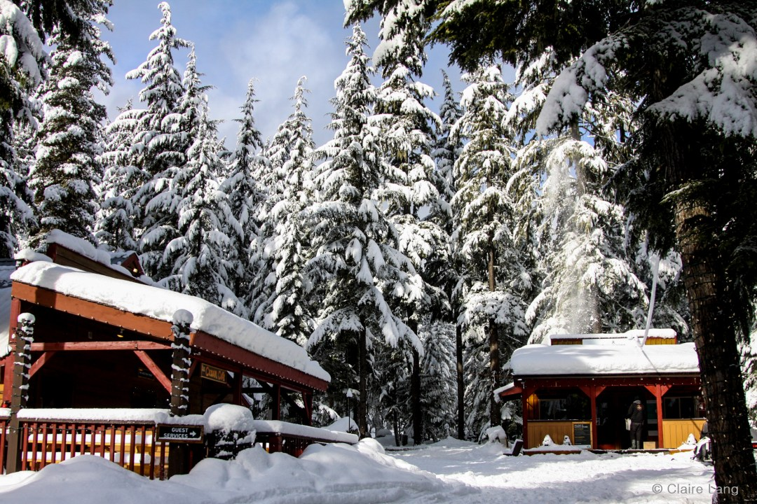9 Things To Do In Whistler (That Aren't Skiing)