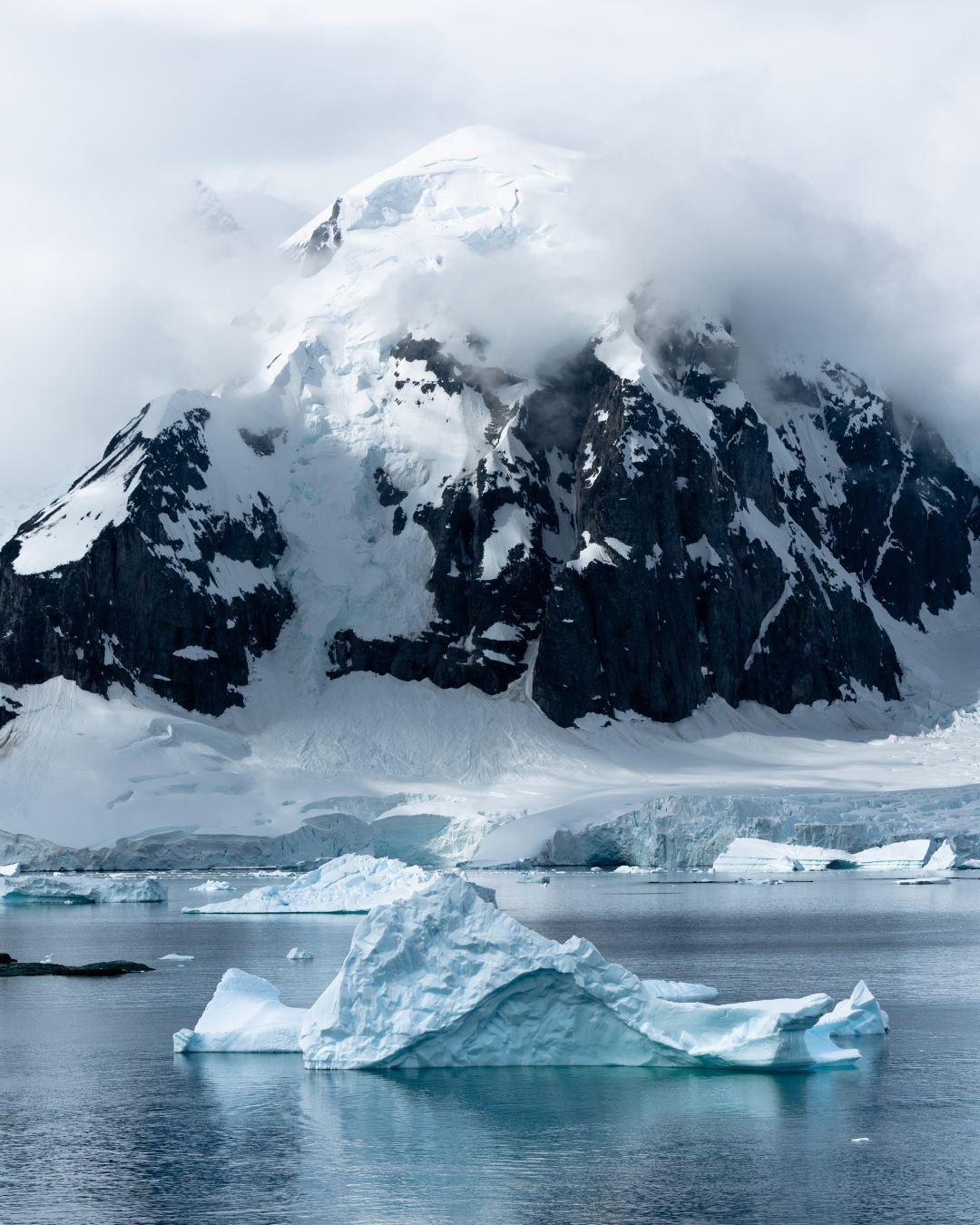 Expedition To Antarctica: What To Expect & What I Loved The Most
