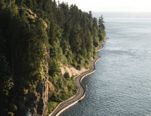 5 Fun and Free Things To Do in Stanley Park