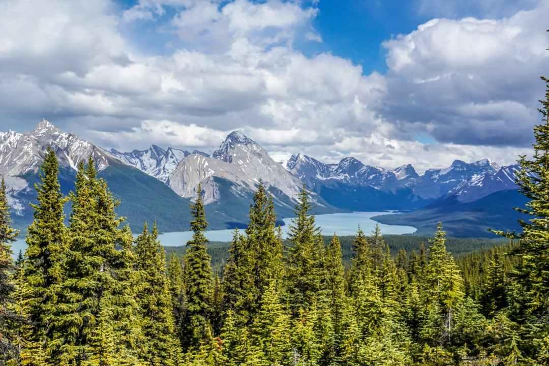 5 Best Hikes in Jasper National Park