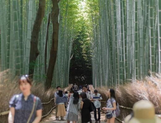 japan people crowds kyoto