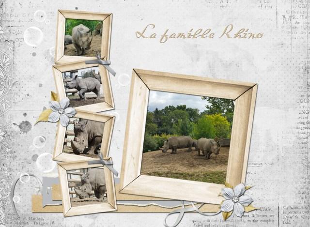 les-rhinos_0