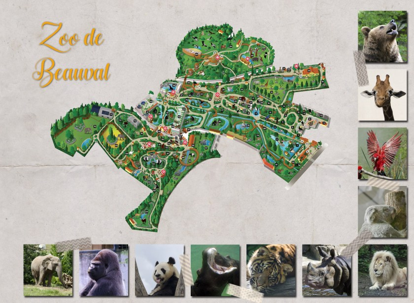 zoo-beauval