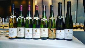 what-qualities-make-a-great-older-wine-all-the-bottles