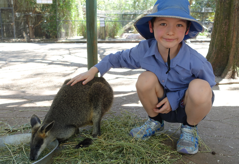 Review: Featherdale Wildlife Park Near Sydney. Australia