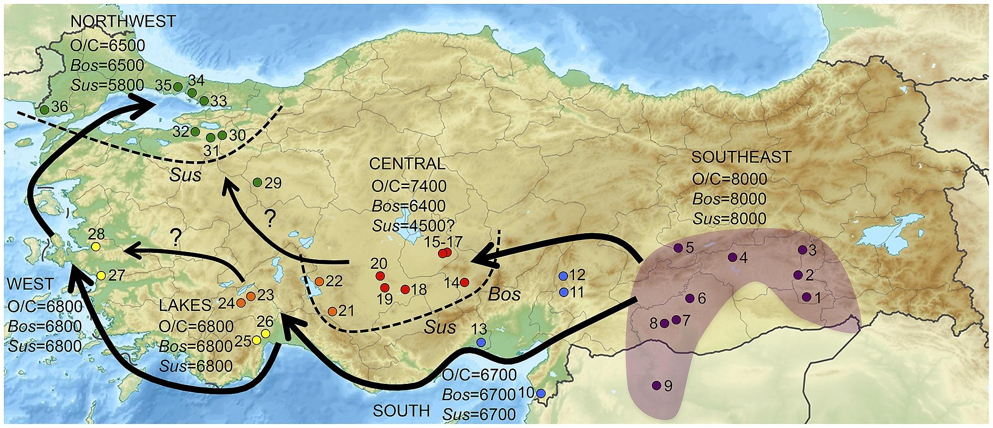 12 400 11 700 Years Ago Kortik Tepe Turkey Pre Early