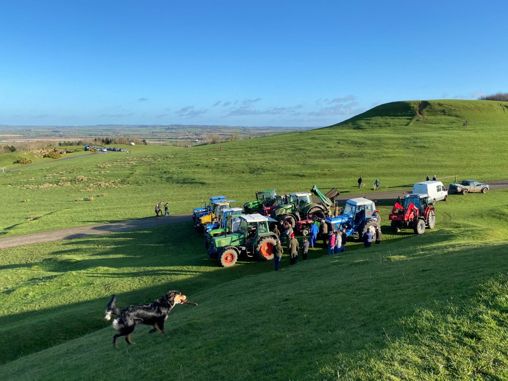 A dog rounding up the tractors