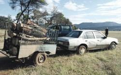 Šumokradice na Ćemovskom polju uhvaćene na djelu