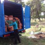 Građani čuvaju Ćemovsko: Kamion šargarepe umjesto u šumi završio kod ovaca