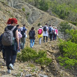 Pohod na Rumiju: Barska bitka, pogled na jezero i more, i crnogorski začini u mom tanjiru
