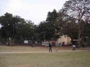 Jaipur's cricket field of dreams/egos