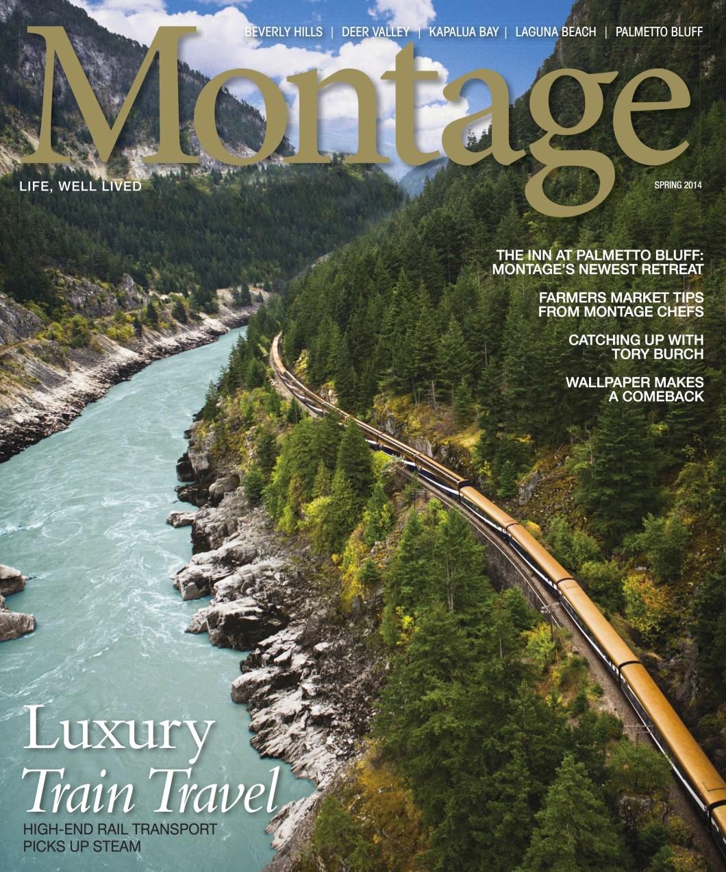 Montage_Spring_Cover_Damon M. Banks