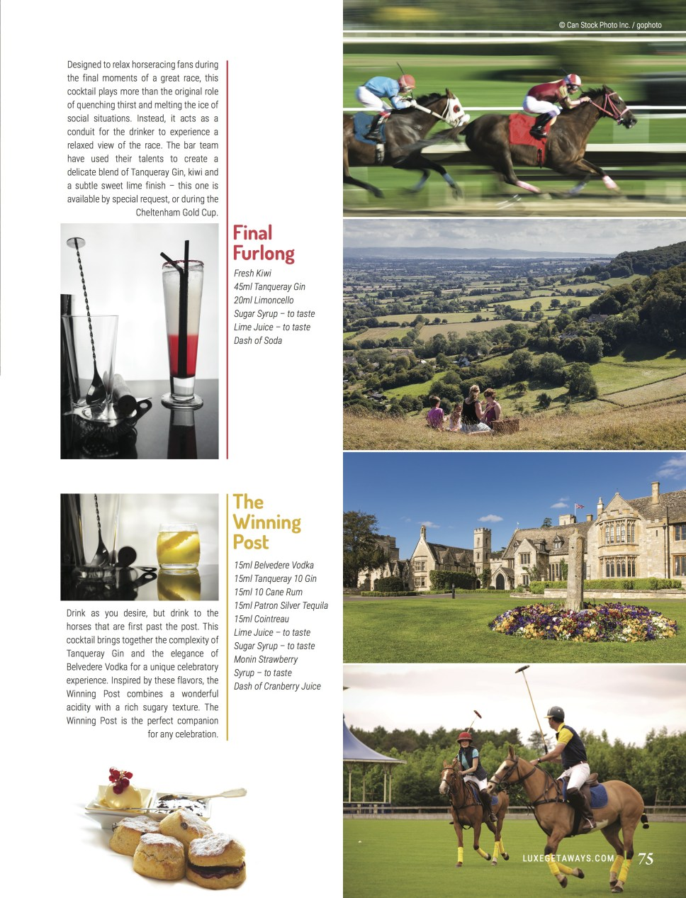 luxegetaways_fall2016_ellenborough-park_2