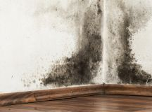 Does Cavity Wall Insulation Cause Problems? - Damp Proofing