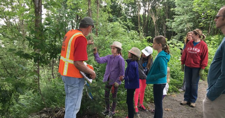 "Moving ""Dougie"" and learning about the urban forest"