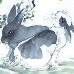 Любовен китайски хороскоп - заек 4