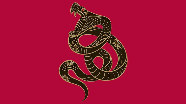 Змия (родени през 1929, 1941, 1953, 1965, 1977, 1989, 2001, 2013) 4