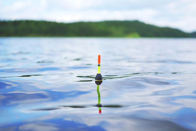 Съвети за рибари - какви такъми да изберем за риболова? 3