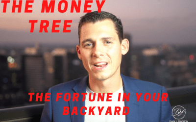 Where is 'The Money Tree'?