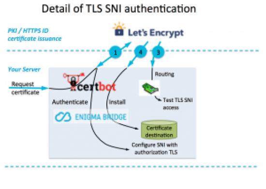 DNS domain verification with Enigma Bridge plugin: