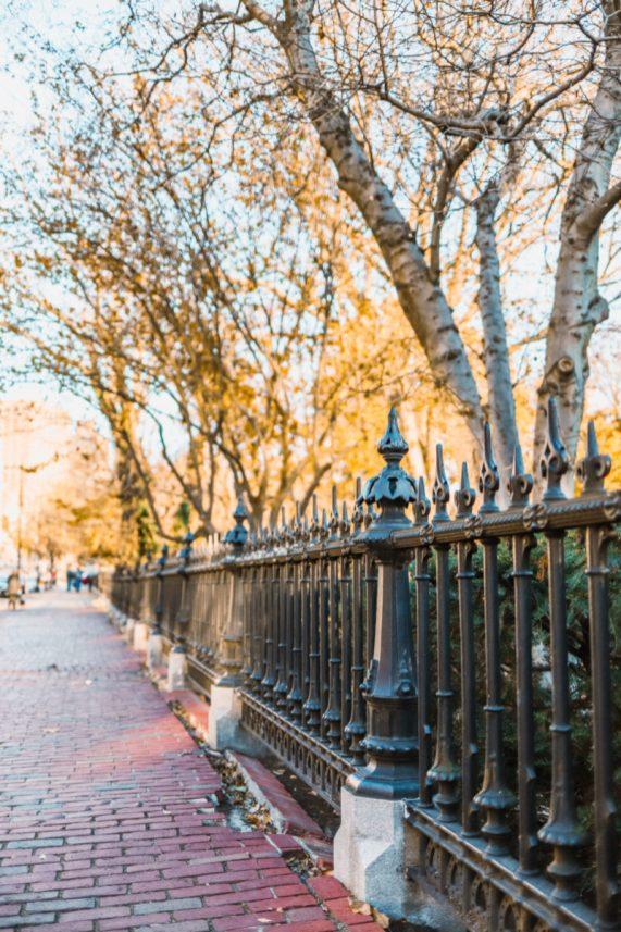 Boston Common and Garden