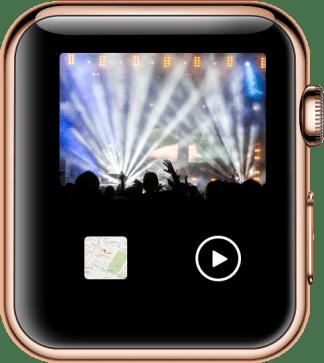 Livestream Video View