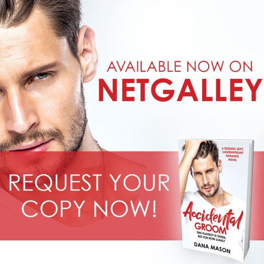 Accidental Groom-NetGalley Image