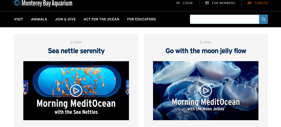 Screen shot of MeditOcean video series on the Monterey Bay Aquarium website
